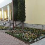 kwiaty ozdobą kościoła